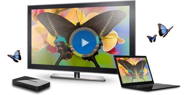 Настройка DLNA (Smart Share) на телевизоре LG Smart TV